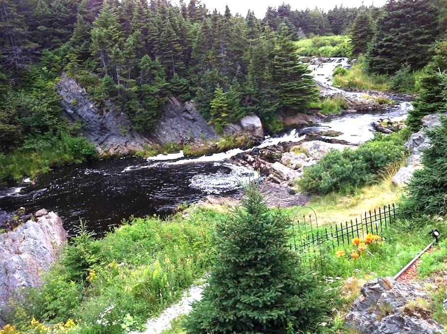 Big River B&B (Whole Apt) - Flatrock - Daire