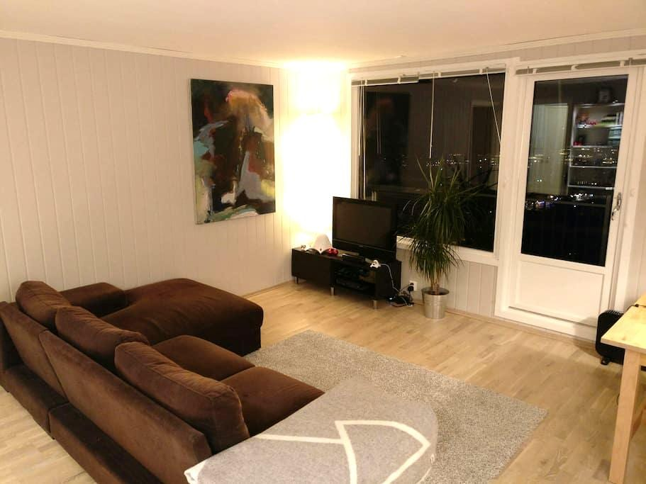 Cosy flat close to Oslo - Tårnåsen - Apartamento