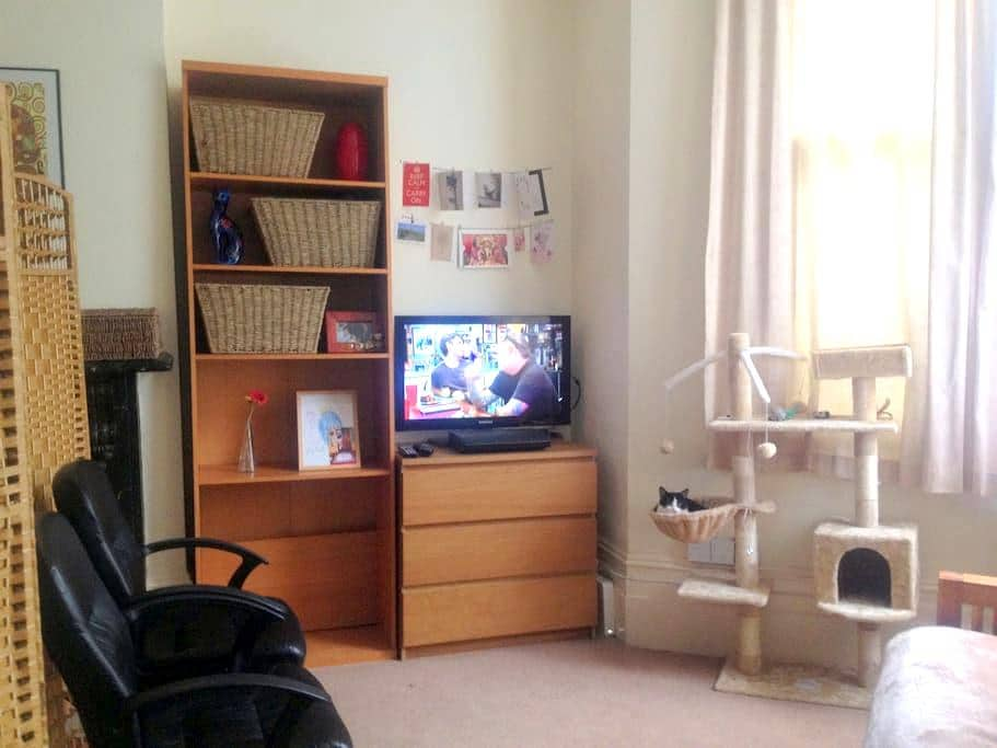 Cosy double bed -Islington - Sorry but just Girls! - London - Apartment