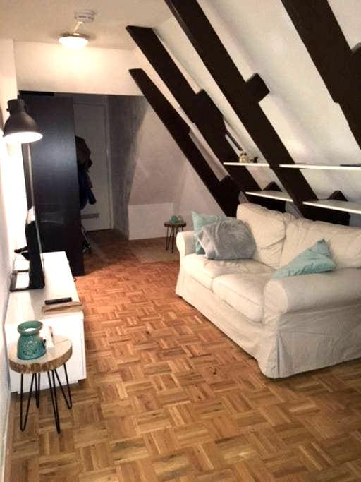 Modern nice apartment in city centre - Groningen - Apto. en complejo residencial
