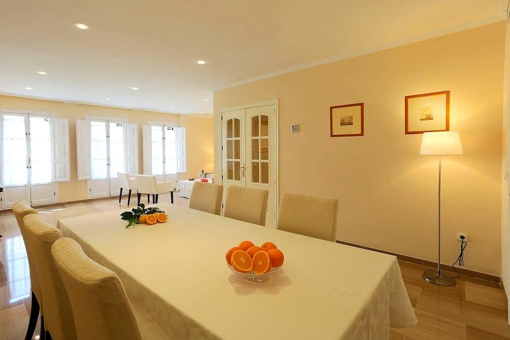 Luxury Apartment in City Center(3 BR+3 WC).Parking - Sevilla - Condominium