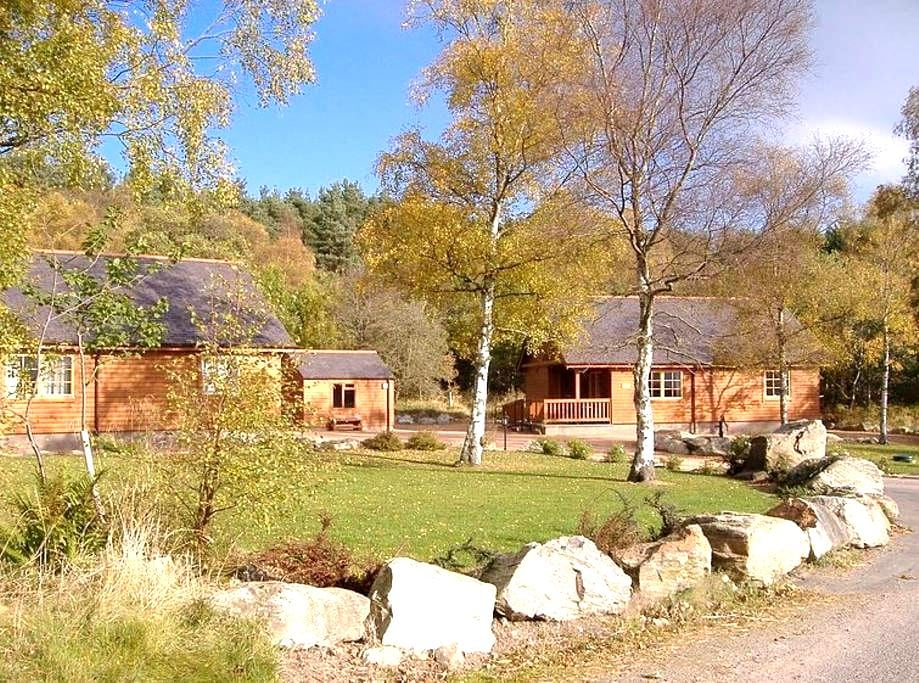 Birch and Willow Lodges - Inchmarlo - Chatka