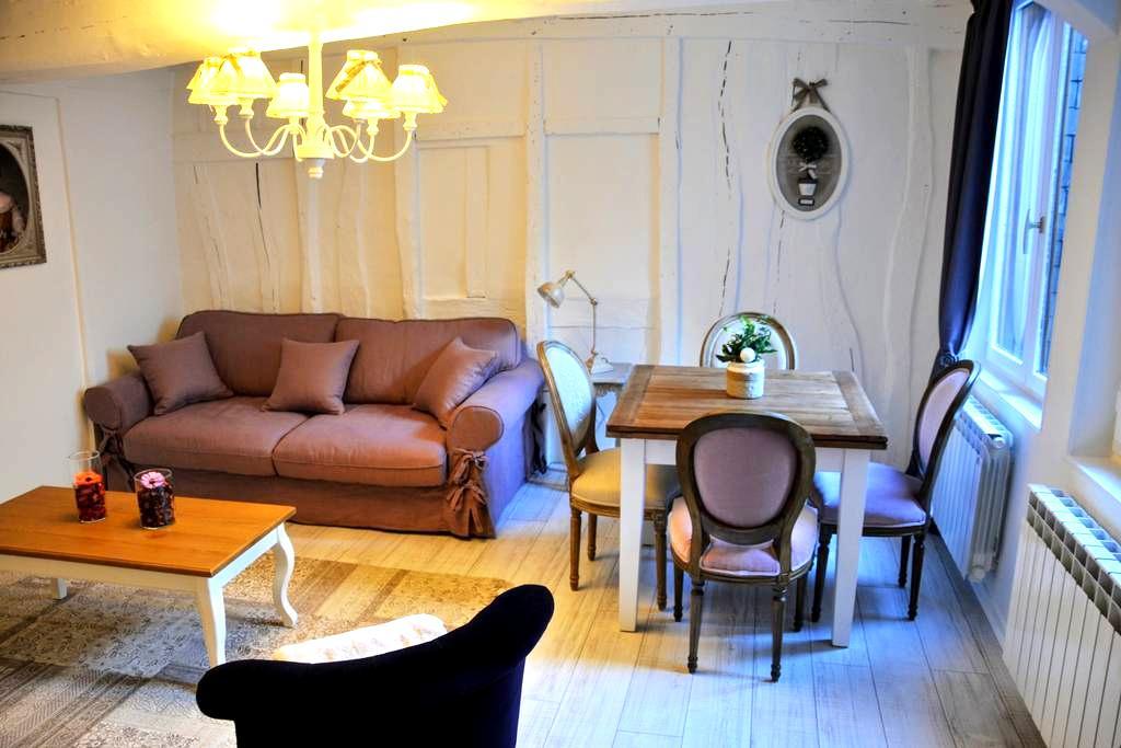 Petit Ange , charming apartment in Rouen - Rouen - Huoneisto