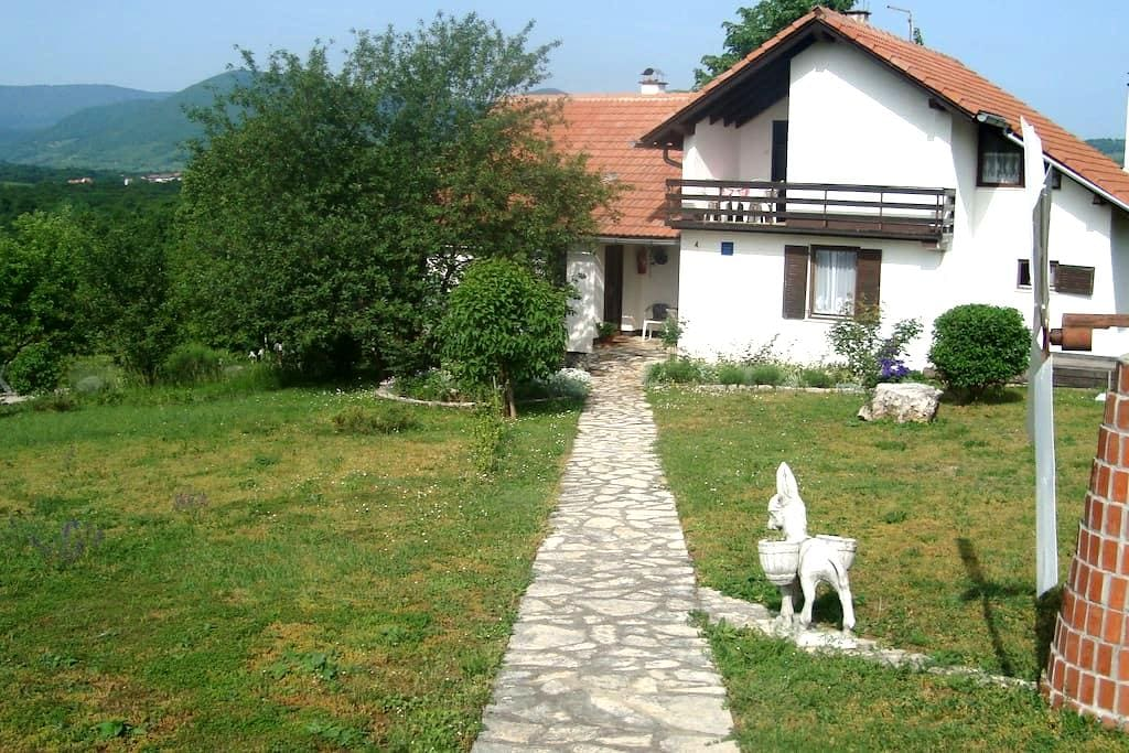 Countryside House Jandric - Drežnik Grad - 一軒家