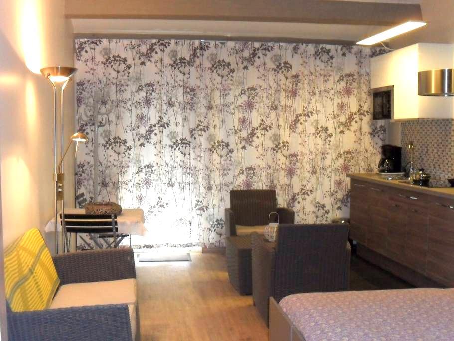 Appartement avec sauna et jacuzzi - Roaix - Rumah