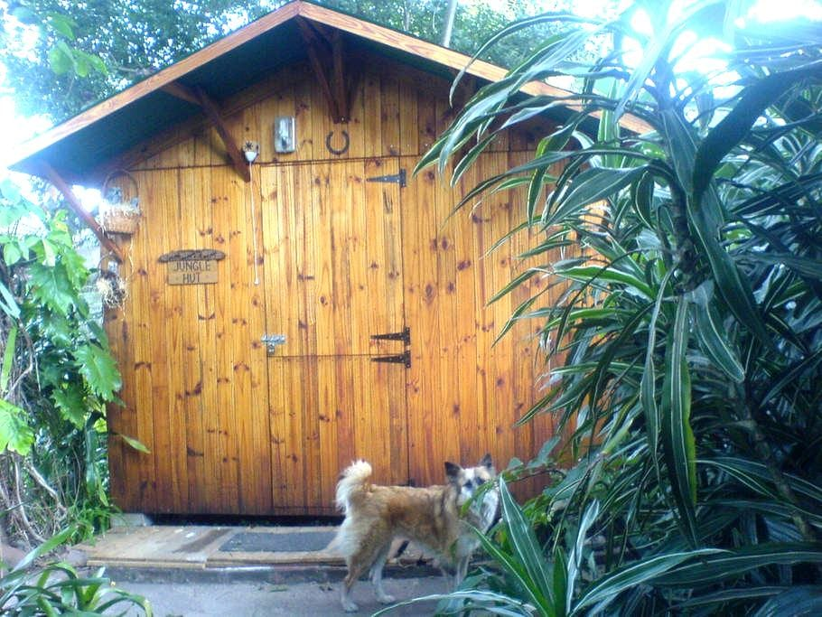 Jungle Hut - Pinetown - Blockhütte