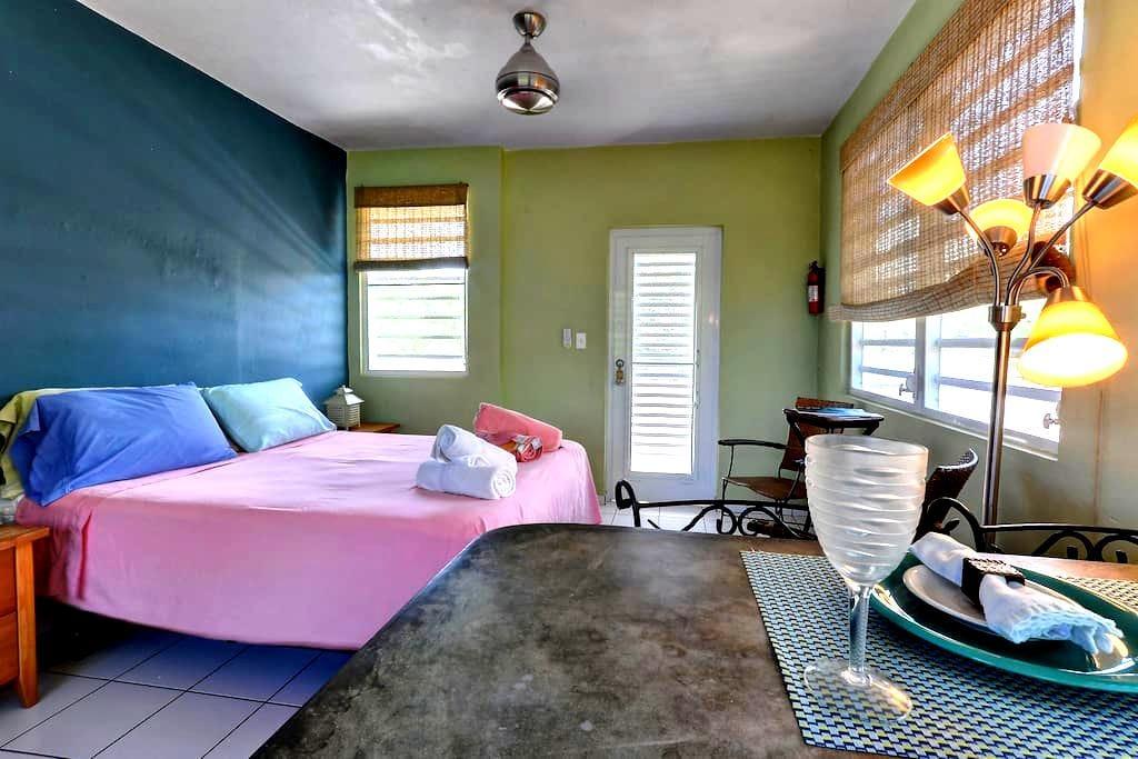 Esperanza Studio Caribbean View (3) - Vieques - Appartement