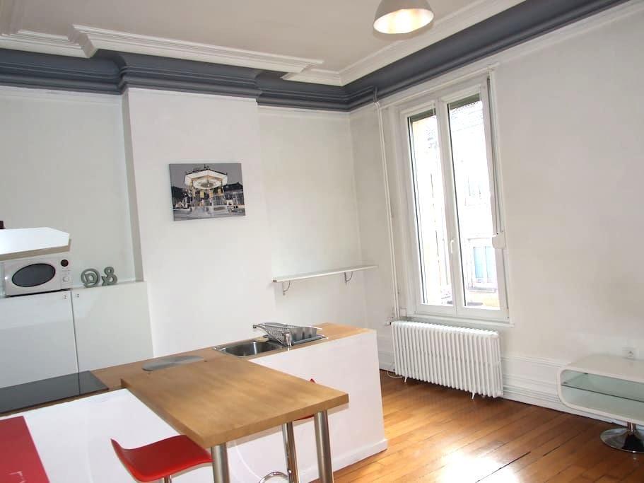 Appart Haussmannien centre ville - Belfort - 公寓