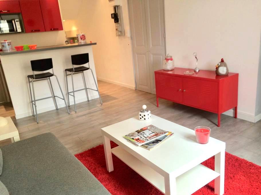 Grenoble, grand studio rénové calme et ensoleillé - Grenoble - Huoneisto