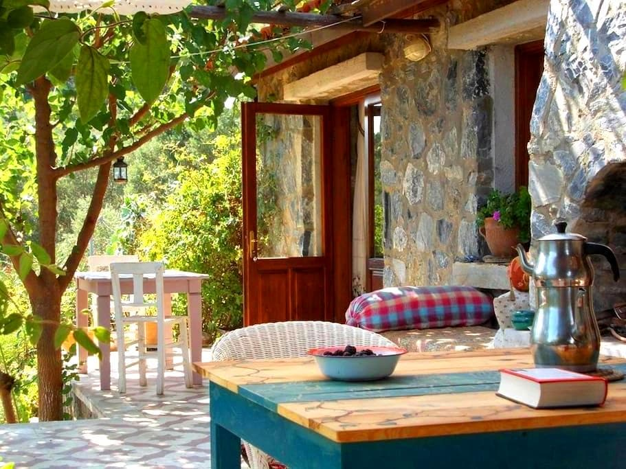 Dirim Guesthouse to feel alive - Yeniköy Kusadasi - Penzion (B&B)