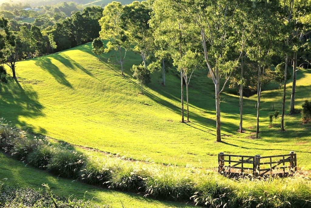 Charming Country Studio - Cooroy - Dom