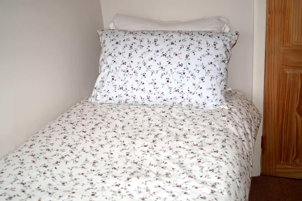 Warm, cosy and compact single room. - Addlestone - Ev