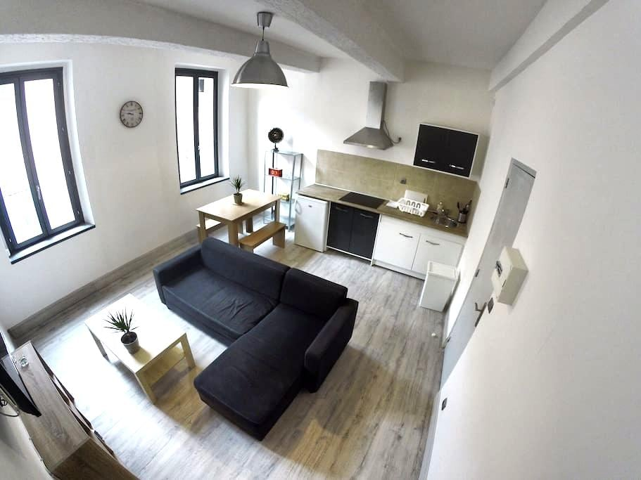 Appartement centre-ville 40m2. - Narbonne - Appartement
