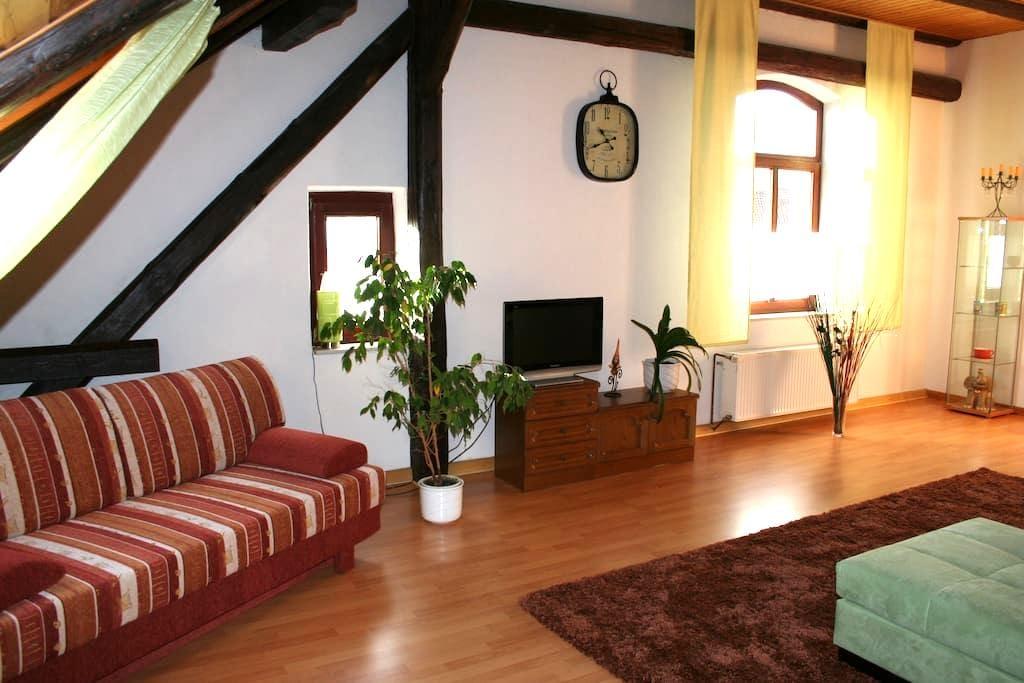 Gemütliche DG-Wohnung auf privatem Reiterhof - Algermissen - Ortak mülk
