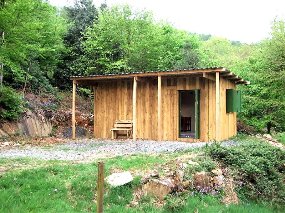 The Cosy Cabin in The Woods - Newby Bridge - Blockhütte