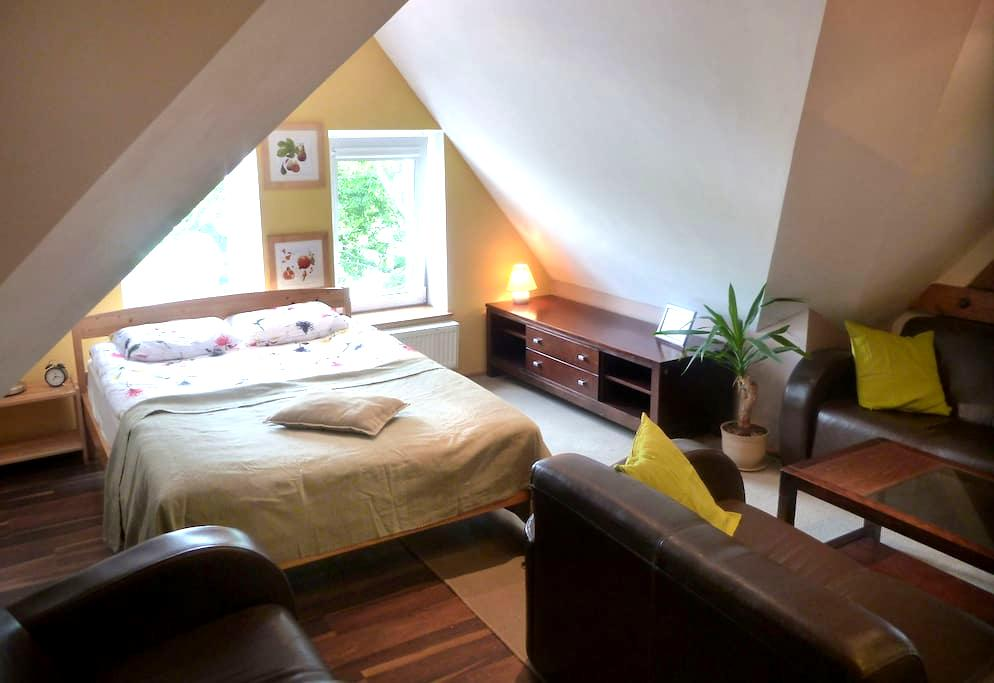 Apartament Róża Wiatrów w zabytkowej kamienicy - Sopot - Appartement