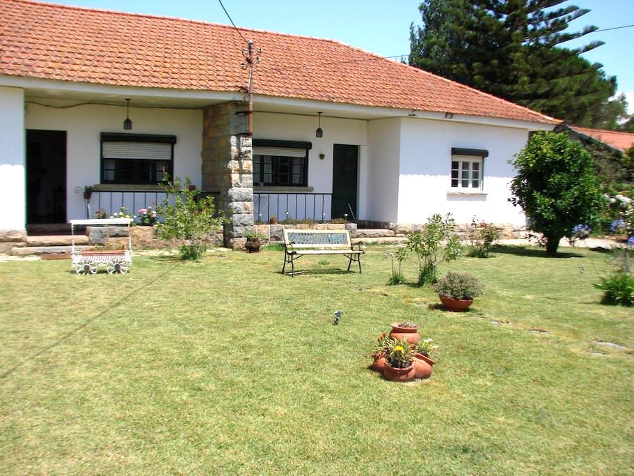 Rustic Villa in Alcabideche, Cascais - 38396/AL - Alcabideche - Haus