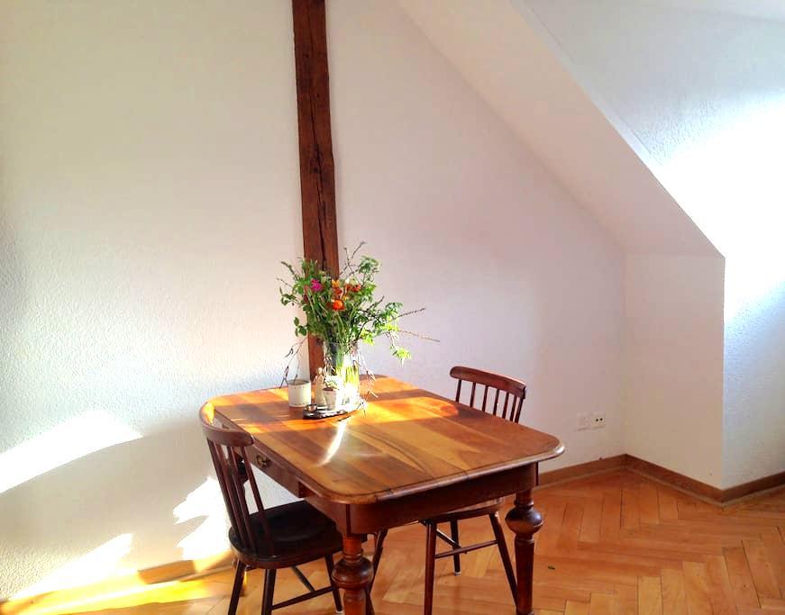 Schönes sonniges Zimmer - Bern - Apartment