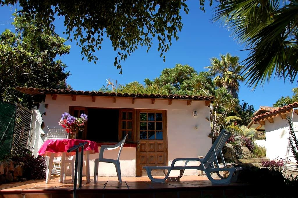 A Cute Studio in an Old Rustic Farm - Orotava - 公寓