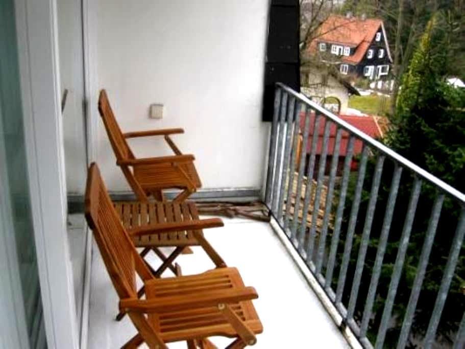Ferienwohnung Rehberg in Braunlage - Braunlage - Apartment