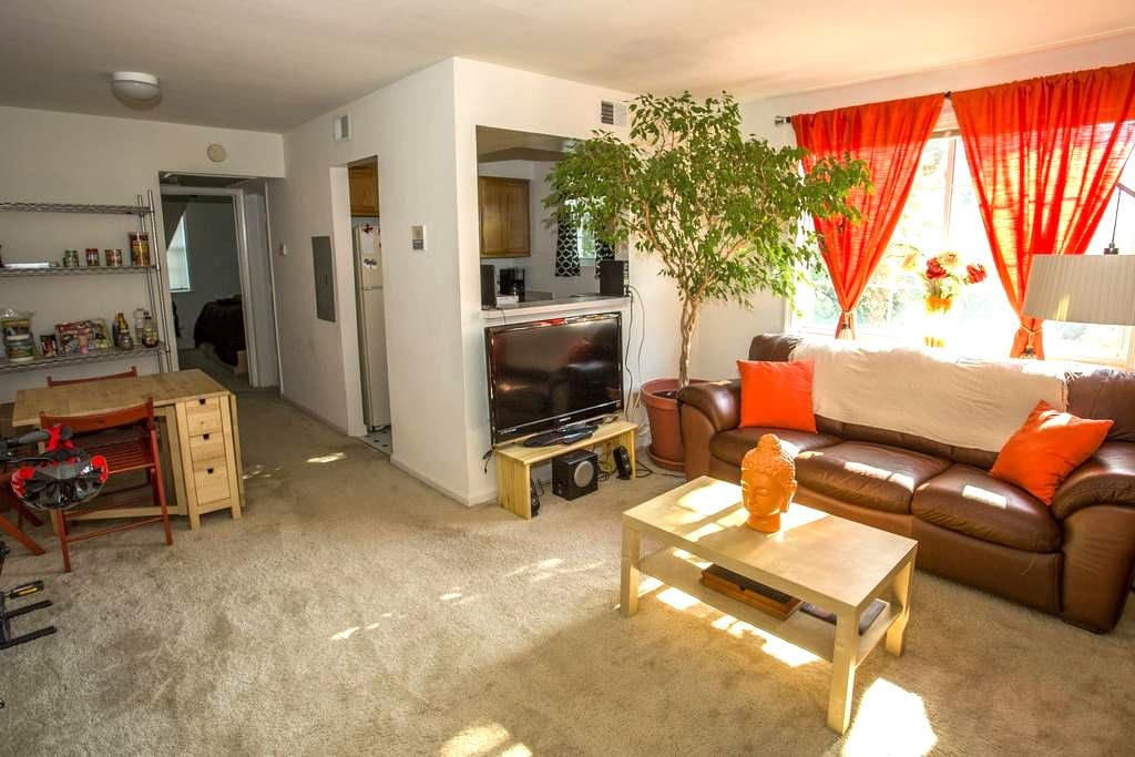 Entire Arlington Apt- Clean & Quiet - Arlington - Appartement