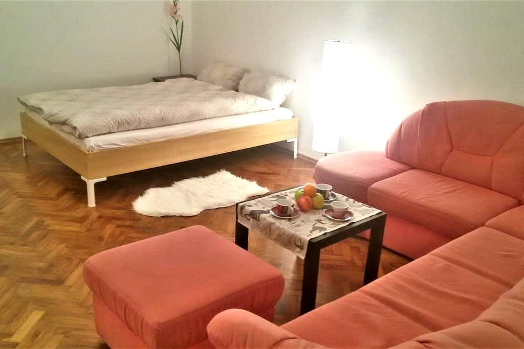 Cosy and quiet 20m² room! - Vienna - Apartmen