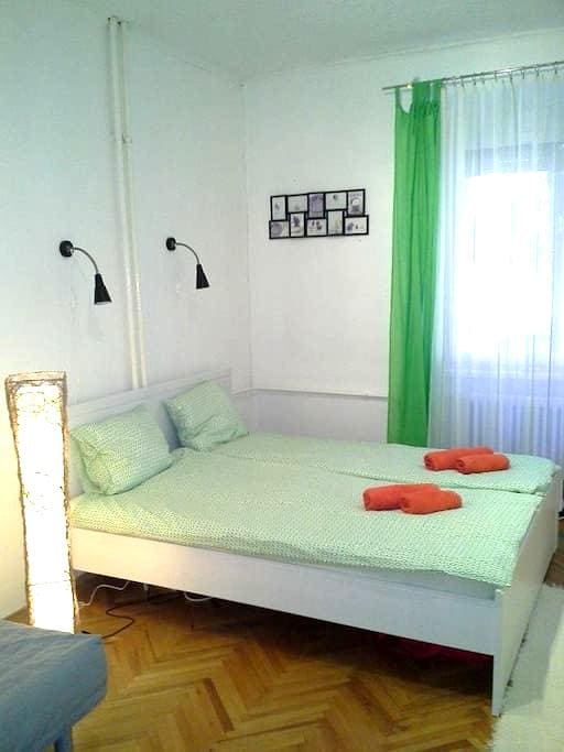 Downtown only 15 minutes quiet apartman - Budapest - Pis