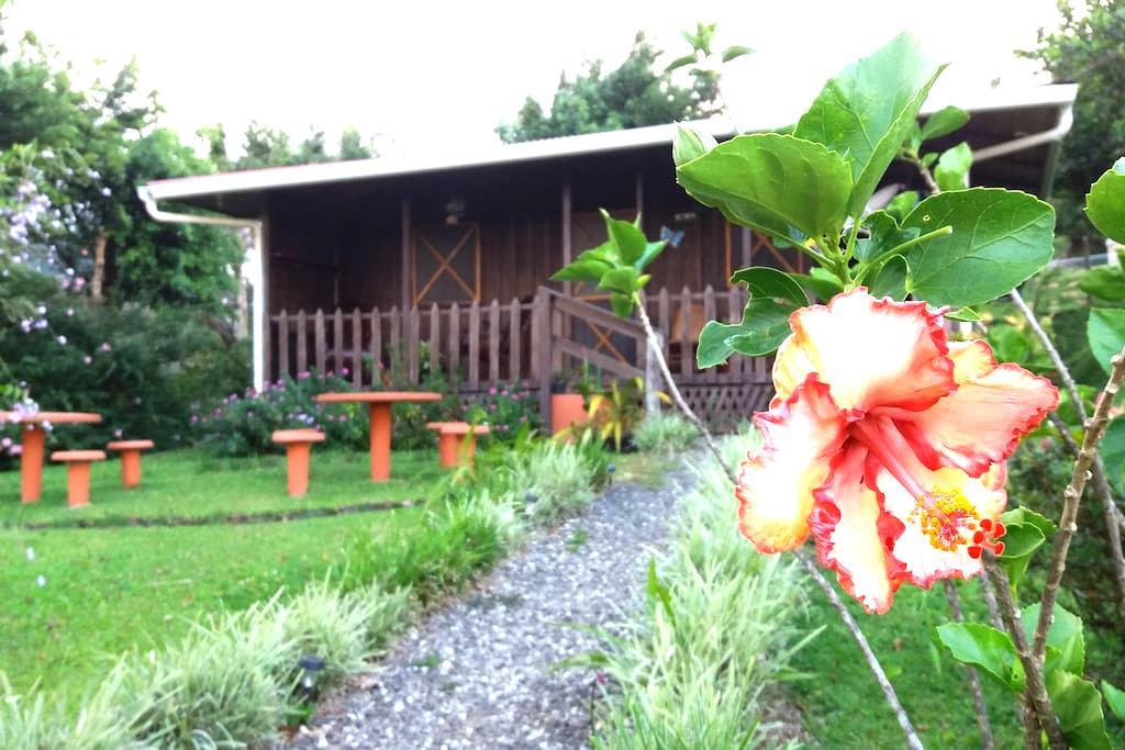 La cabaña se llama Rancho de Moncho - Bijagua - Cottage