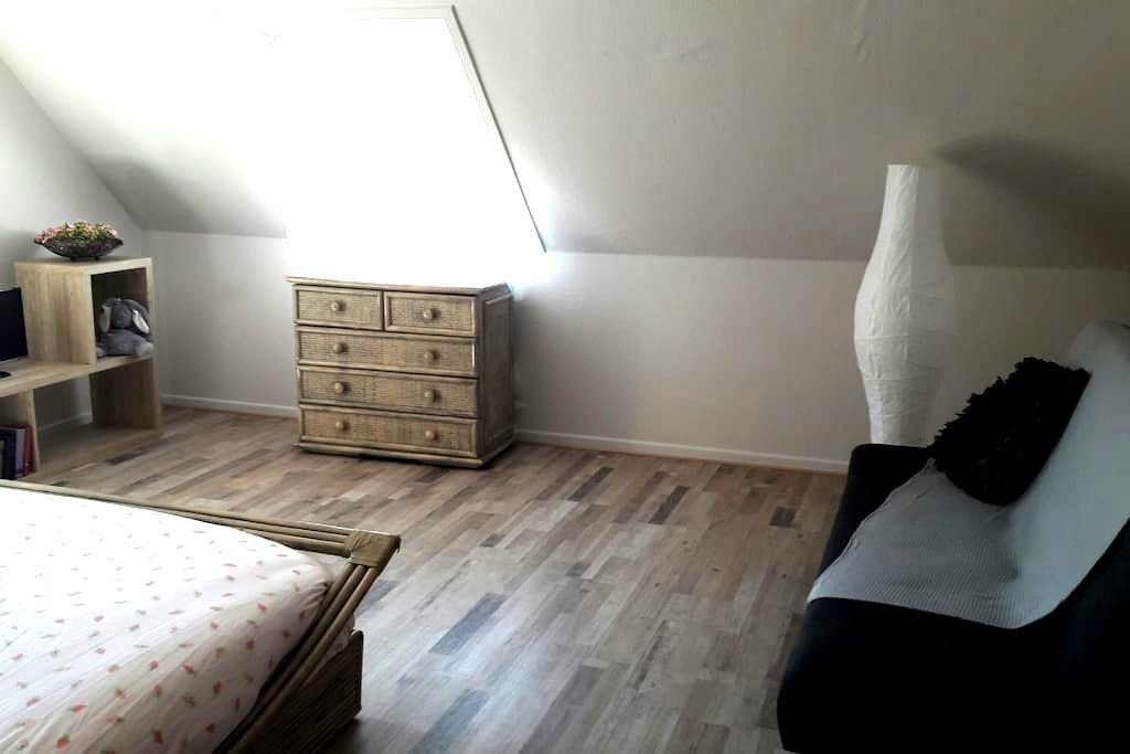 Belle chambre dans maison sur la route des vins. - Ingersheim