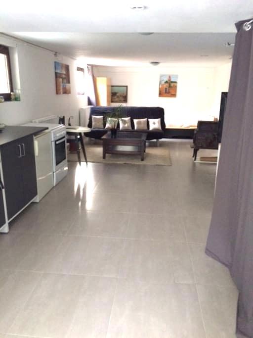 Appartement à proximité de Strasbourg - Ostwald - Apartemen