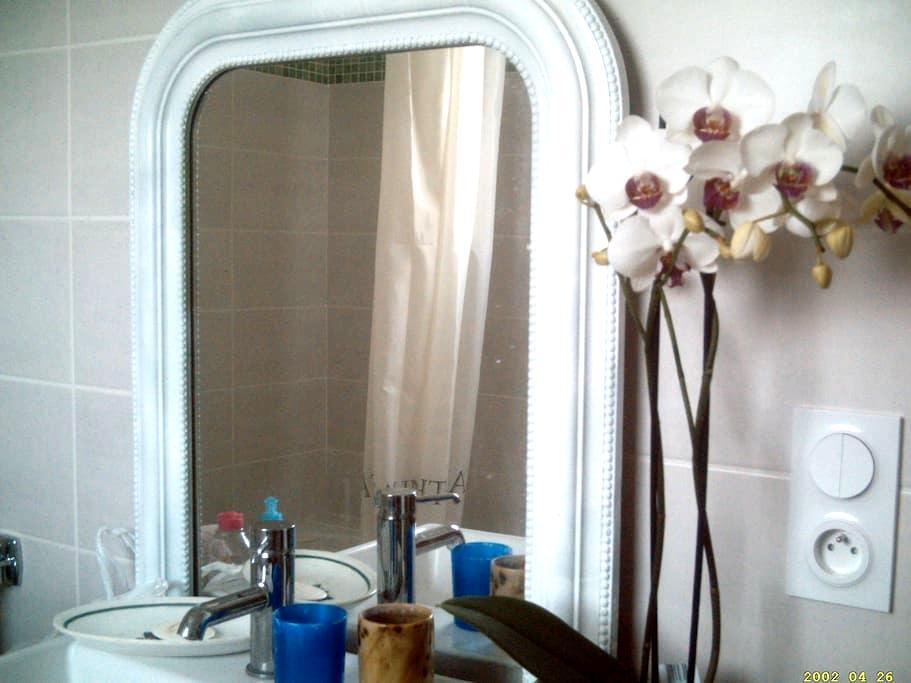 maison à étage rénovée - Burdeos - Bed & Breakfast