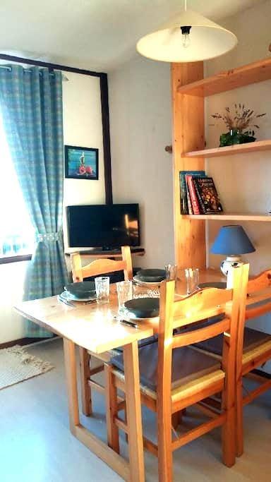 Charmant studio à 500 mètres des pistes - Chamrousse - Lägenhet