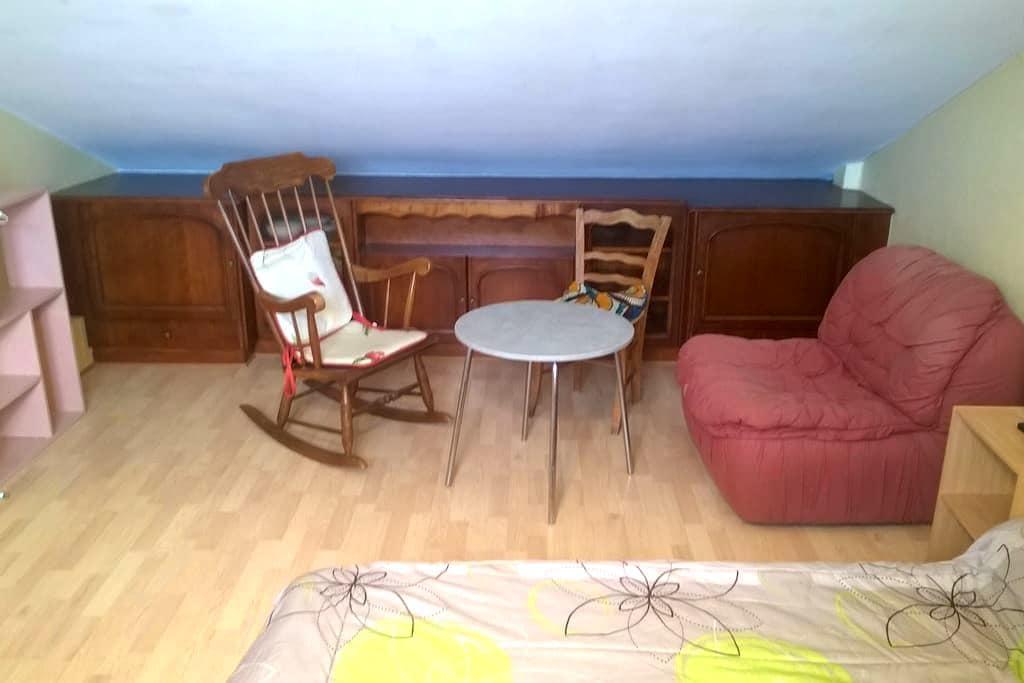 studio fonctionnel, clair, calme et bien situé. - Angers - Bed & Breakfast