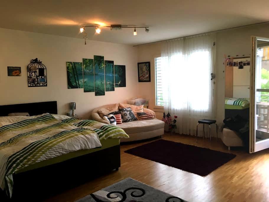 Grosse, schöne 1-Zimmer-Wohnung - Pratteln - 公寓
