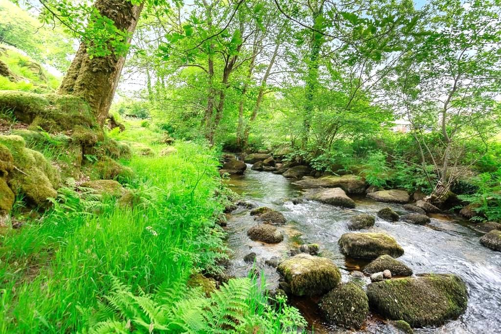 The Bakehouse : Mossy, Rocky and Wild - Ponsworthy - House