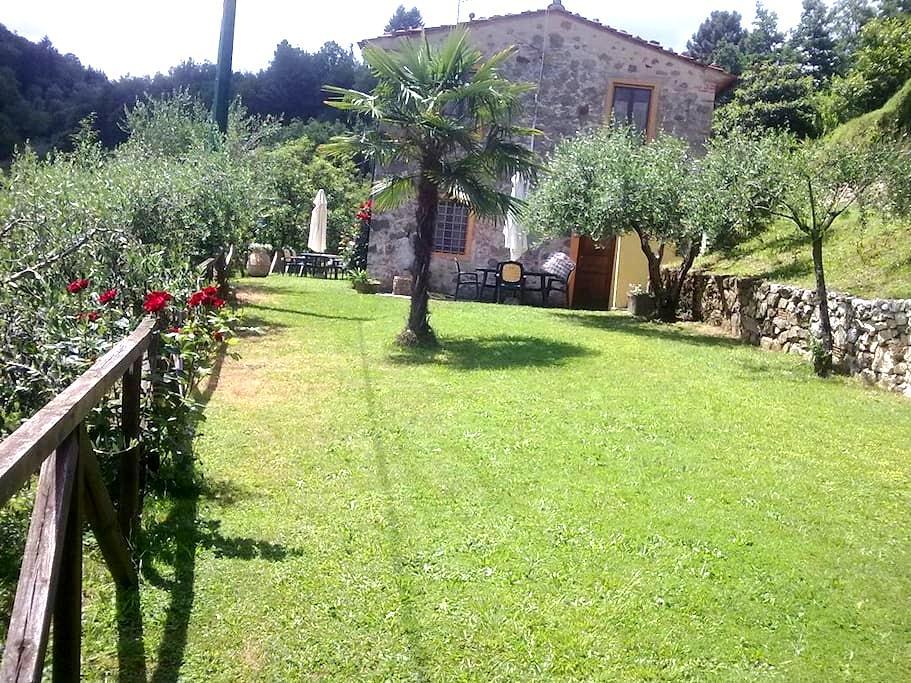 Casa in Pietra fine 800 0ttimamente - Castelbellino - Bed & Breakfast