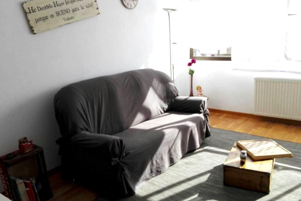 Apartamento coqueto y céntrico - Burgos - Apartament