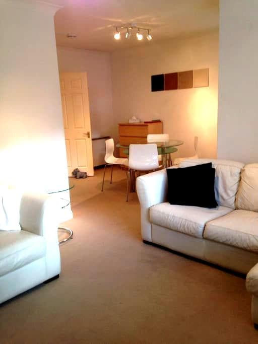 Newcastle City Centre Flat/Parking - Newcastle - Apartment