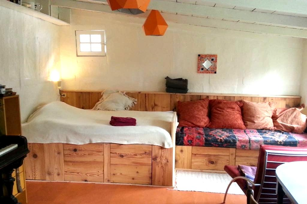 Cosy Amstel guesthouse with garden - Amsterdam - Leilighet