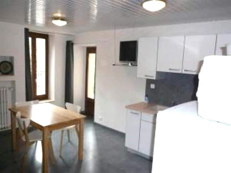 appartement spacieux rue principale - Brides-les-Bains - Appartement