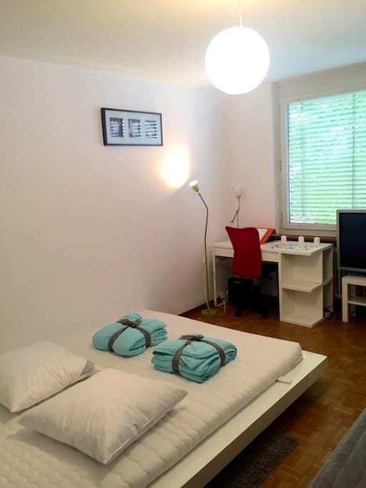 Apartment close to Main Station and Central - Zürich - Lejlighed