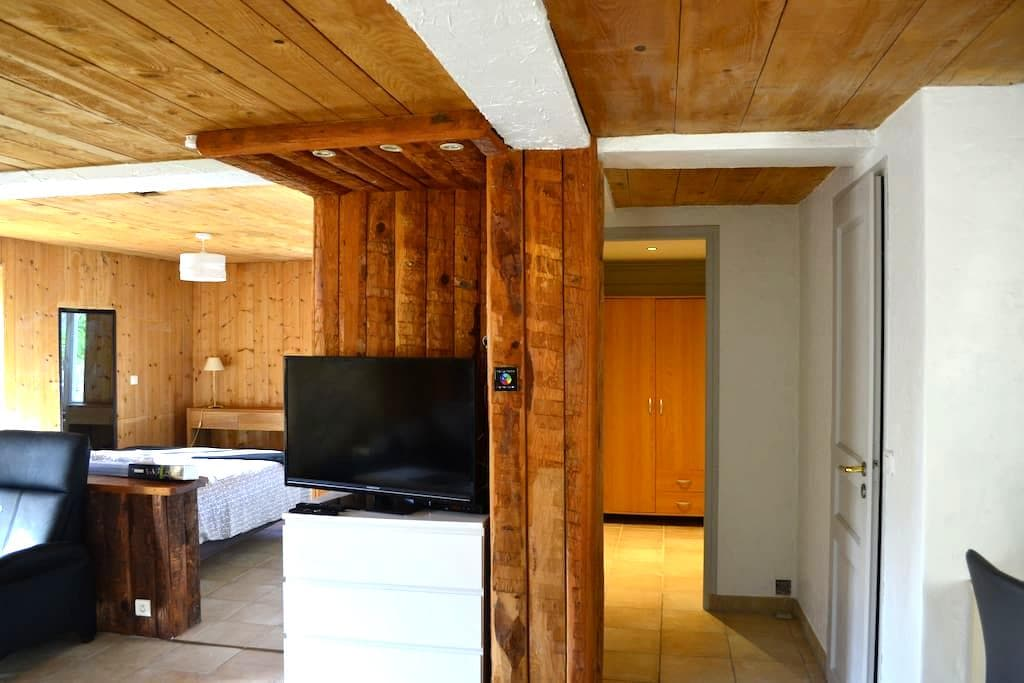 Apartment with  Garden & terrasse very quiet - Thonon les bains - Appartement