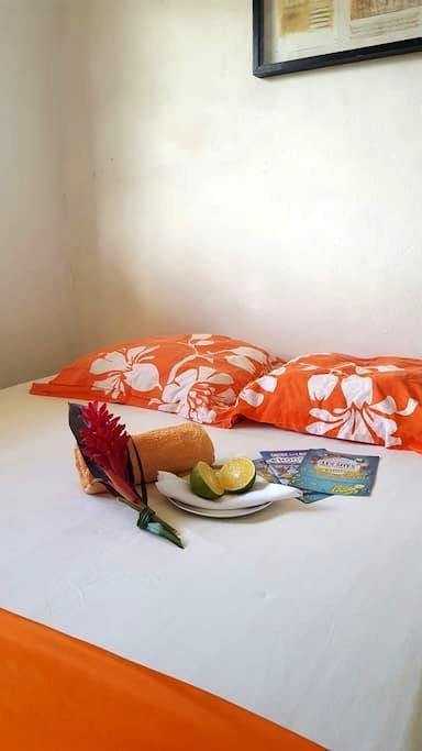 Bon plan vacances en Guadeloupe!!! - Capesterre Belle Eau - Lägenhet