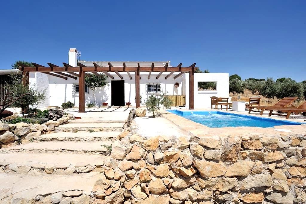 B&B on olive farm near Granada - Montejícar - Bed & Breakfast