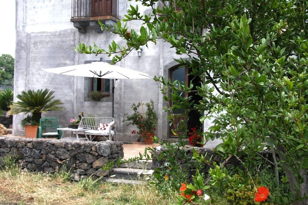 Palmento Etna-Taormina:wine passion - Piedimonte Etneo - Apartment