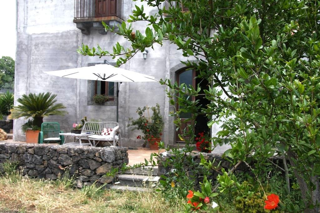 Palmento Etna-Taormina:wine passion - Piedimonte Etneo - Daire