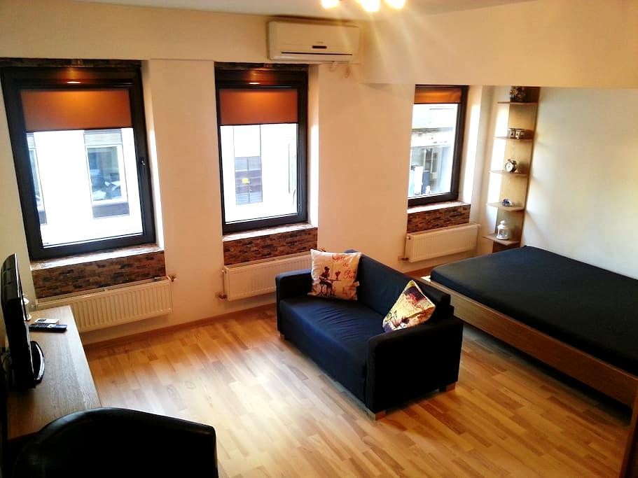 Downtown Studio - Victoria Blvd - Boekarest - Appartement