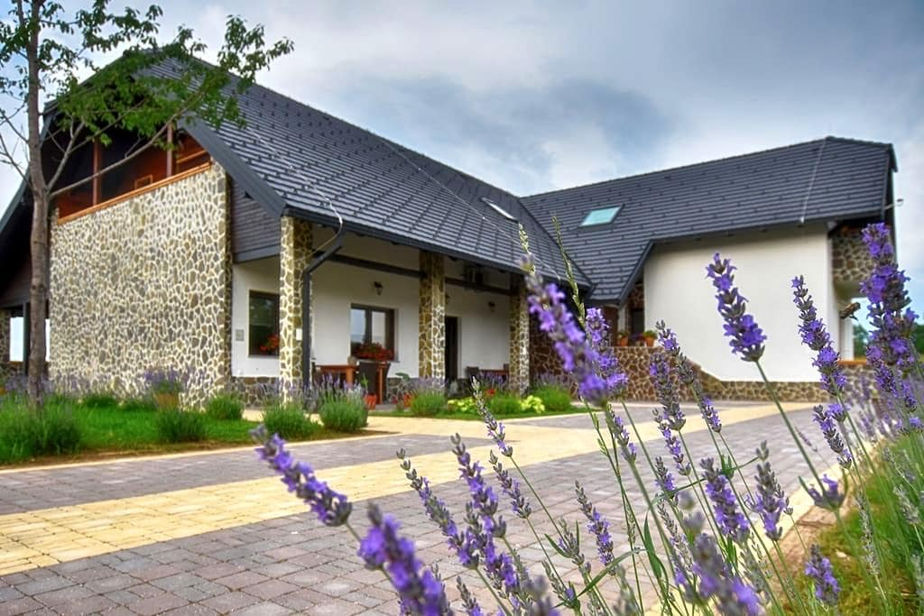 Villa Stone(Oak)**** - Rakovica