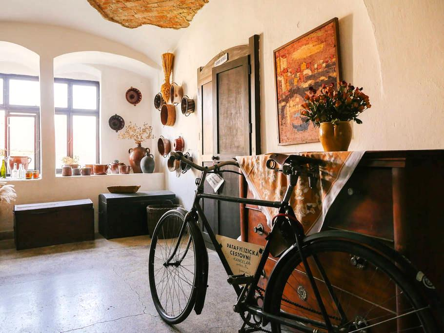 Atic apartment in a historic house - Lomnice