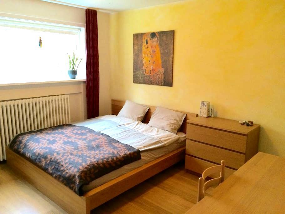 Spacious room in central area - Reiquiavique - Apartamento